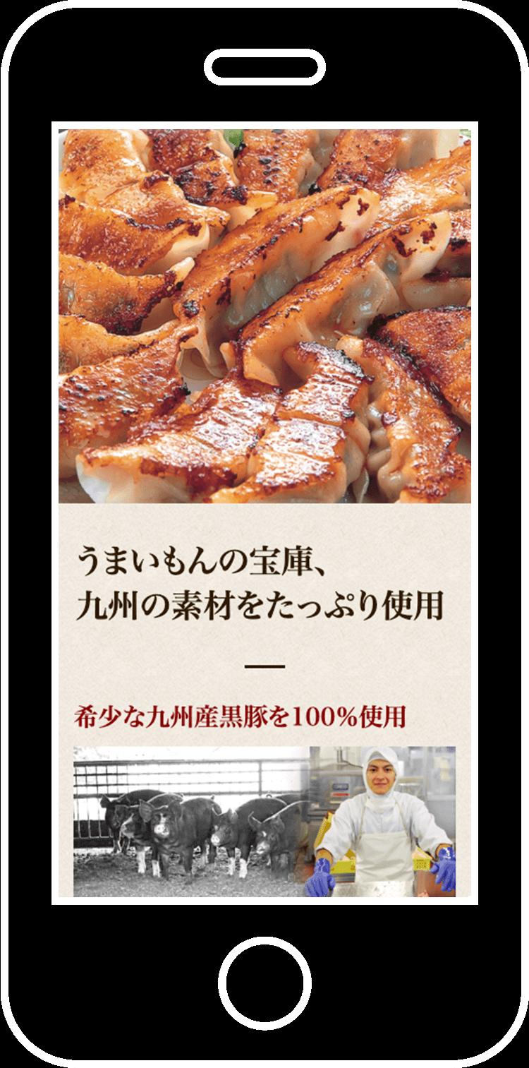 餃子の王国 ランディングページ制作